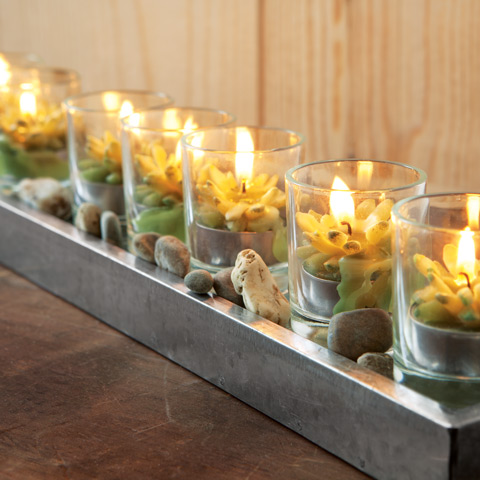 Succulent Candle Garden