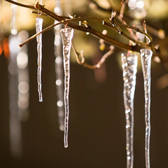 Twenty Nordic Icicle Ornaments